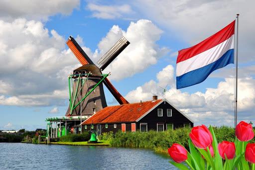 Mejores escuelas de bachata en Holanda